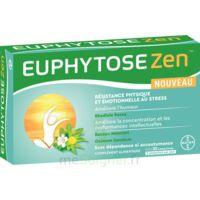 Euphytosezen Comprimés B/30 à SAINT-GEORGES-SUR-BAULCHE