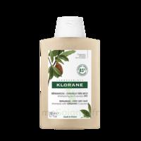 Klorane Beurre Cupuaçu Bio Shampoing Cheveux Très Secs 200ml à SAINT-GEORGES-SUR-BAULCHE
