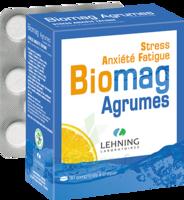 Lehning Biomag Comprimés à Croquer Agrumes B/90 à SAINT-GEORGES-SUR-BAULCHE