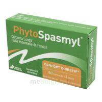 PHYTOSPASMYL CAPS B/60 à SAINT-GEORGES-SUR-BAULCHE