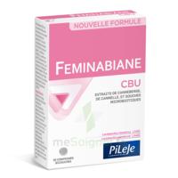 Pileje Feminabiane Cbu 30 Comprimés Bicouches à SAINT-GEORGES-SUR-BAULCHE