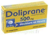Doliprane 500 Mg Comprimés 2plq/8 (16) à SAINT-GEORGES-SUR-BAULCHE