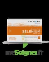Granions De Selenium 0,96 Mg/2 Ml S Buv 30amp/2ml à SAINT-GEORGES-SUR-BAULCHE