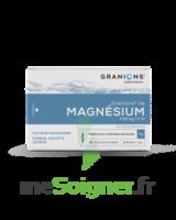 Granions De Magnesium 3,82 Mg/2 Ml S Buv 30amp/2ml à SAINT-GEORGES-SUR-BAULCHE