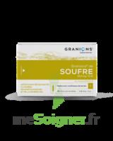 Granions De Soufre 19,5 Mg/2 Ml S Buv 30amp/2ml à SAINT-GEORGES-SUR-BAULCHE