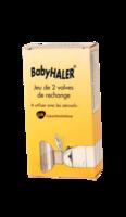 Babyhaler, Bt 2 à SAINT-GEORGES-SUR-BAULCHE