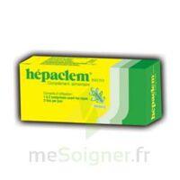 HEPACLEM PHYTO, bt 30 à SAINT-GEORGES-SUR-BAULCHE