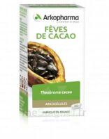 Arkogélules Cacao Gélules Fl/45 à SAINT-GEORGES-SUR-BAULCHE