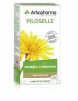 Arkogélules Piloselle Gélules Fl/45 à SAINT-GEORGES-SUR-BAULCHE