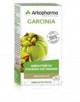 Arkogélules Garcinia Gélules Fl/45 à SAINT-GEORGES-SUR-BAULCHE