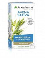 Arkogélules Avena Sativa Gélules Fl/45 à SAINT-GEORGES-SUR-BAULCHE