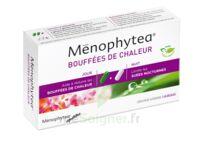 Menophytea Bouffees De Chaleur, Bt 40 (20 + 20) à SAINT-GEORGES-SUR-BAULCHE