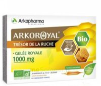 Arkoroyal Gelée Royale Bio 1000 Mg Solution Buvable 20 Ampoules/10ml à SAINT-GEORGES-SUR-BAULCHE