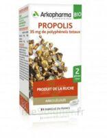 Arkogélules Propolis Bio Gélules Fl/45 à SAINT-GEORGES-SUR-BAULCHE