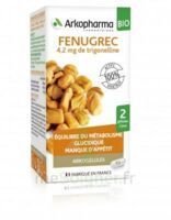 Arkogélules Fenugrec Bio Gélules Fl/40 à SAINT-GEORGES-SUR-BAULCHE