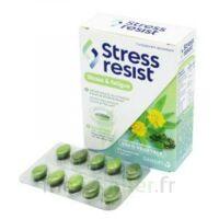 Stress Resist Comprimés Stress & Fatigue B/30 à SAINT-GEORGES-SUR-BAULCHE