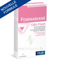 Pileje Feminabiane Cbu Flash - Nouvelle Formule 20 Comprimés à SAINT-GEORGES-SUR-BAULCHE