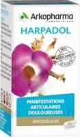 ARKOGELULES HARPAGOPHYTON Gélules Fl/150 à SAINT-GEORGES-SUR-BAULCHE