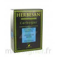 Herbesan Carbogaz, Bt 45 à SAINT-GEORGES-SUR-BAULCHE