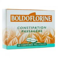 Boldoflorine 1 Cpr Pell Constipation Passagère B/40 à SAINT-GEORGES-SUR-BAULCHE