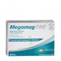 Megamag One à SAINT-GEORGES-SUR-BAULCHE