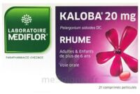 Kaloba 20 Mg Comprimé Pelliculé Plq/21 à SAINT-GEORGES-SUR-BAULCHE