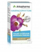 Arkogelules Harpagophyton Gélules Fl/45 à SAINT-GEORGES-SUR-BAULCHE