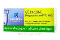 Cetirizine Biogaran Conseil 10 Mg, Comprimé Pelliculé Sécable à SAINT-GEORGES-SUR-BAULCHE