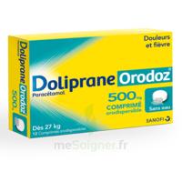 Dolipraneorodoz 500 Mg, Comprimé Orodispersible à SAINT-GEORGES-SUR-BAULCHE