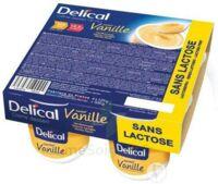 Delical Creme Dessert Hp Hc Sans Lactose, Pot 200 G X 4 à SAINT-GEORGES-SUR-BAULCHE
