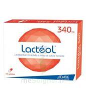 Lacteol 340 Mg, 10 Gélules