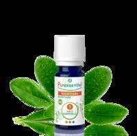Puressentiel Huiles essentielles - HEBBD Ravintsara BIO* - 5 ml à SAINT-GEORGES-SUR-BAULCHE