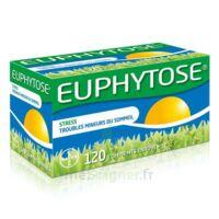 Euphytose Comprimés Enrobés B/120 à SAINT-GEORGES-SUR-BAULCHE