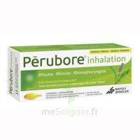 Perubore Caps Inhalation Par Vapeur Inhalation Plq/15 à SAINT-GEORGES-SUR-BAULCHE