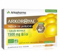 Arkoroyal Gelée Royale Bio 1500 Mg Solution Buvable 20 Ampoules/10ml à SAINT-GEORGES-SUR-BAULCHE