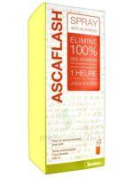 Ascaflash Spray anti-acariens 500ml à SAINT-GEORGES-SUR-BAULCHE