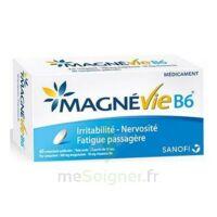 Magnevie B6 100 Mg/10 Mg Comprimés Pelliculés Plaq/60 à SAINT-GEORGES-SUR-BAULCHE