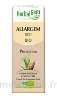 Allargem Solution Buvable Bio 30ml à SAINT-GEORGES-SUR-BAULCHE