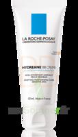 Hydreane Bb Crème Crème Teintée Rose 40ml à SAINT-GEORGES-SUR-BAULCHE