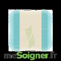 Comfeel Plus Pans Opaque 22,5x22,5cm B/10 à SAINT-GEORGES-SUR-BAULCHE