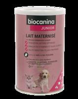 Biocanina Lait poudre maternisé B/400g à SAINT-GEORGES-SUR-BAULCHE
