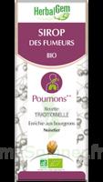 Herbalgem Sirop Bio Des Fumeurs 150ml à SAINT-GEORGES-SUR-BAULCHE