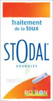 Boiron Stodal Granules Tubes/2 à SAINT-GEORGES-SUR-BAULCHE