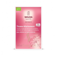 "Weleda Tisane Allaitement ""fruits Rouges"" 2x20g à SAINT-GEORGES-SUR-BAULCHE"