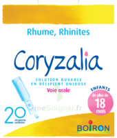 Boiron Coryzalia Solution Buvable Unidose B/20 à SAINT-GEORGES-SUR-BAULCHE