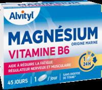 Govital Magnésium Vitamine B6 Comprimés B/45 à SAINT-GEORGES-SUR-BAULCHE