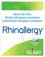 Boiron Rhinallergy Comprimés B/40 à SAINT-GEORGES-SUR-BAULCHE
