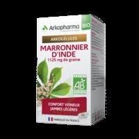 Arkogélules Marronnier D'inde Bio Gélules Fl/45 à SAINT-GEORGES-SUR-BAULCHE