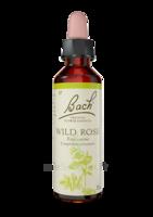 Fleurs De Bach® Original Wild Rose - 20 Ml à SAINT-GEORGES-SUR-BAULCHE