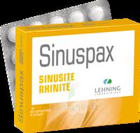 Lehning Sinuspax Comprimés à Croquer 3plq/20 à SAINT-GEORGES-SUR-BAULCHE